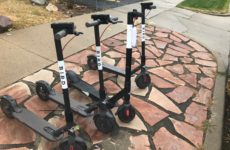 Bird is the word: e-scooters bring safety concerns, economic opportunities to Westminster