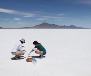 Professor searches for ancient life forms in Salt Flats