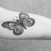 Tattoo perceptions on campus