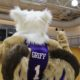 Parson to Griffin… to nothing at all: Westminster mascot's evolution and confusion