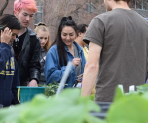 Annual Earth Day celebration highlights waste at Westminster