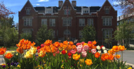 Liberal arts versus Ivy League: find what fits you best, according to administrators