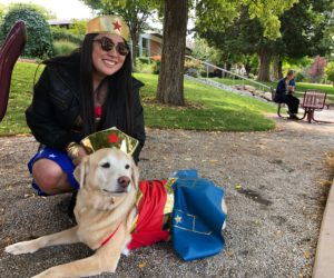 Dogs connect the campus community at Westminster Mutt Show