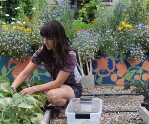 Student's return to regular workdays in organic garden, give back to community