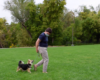 Lucy Wilks shares dog training tips and experiences